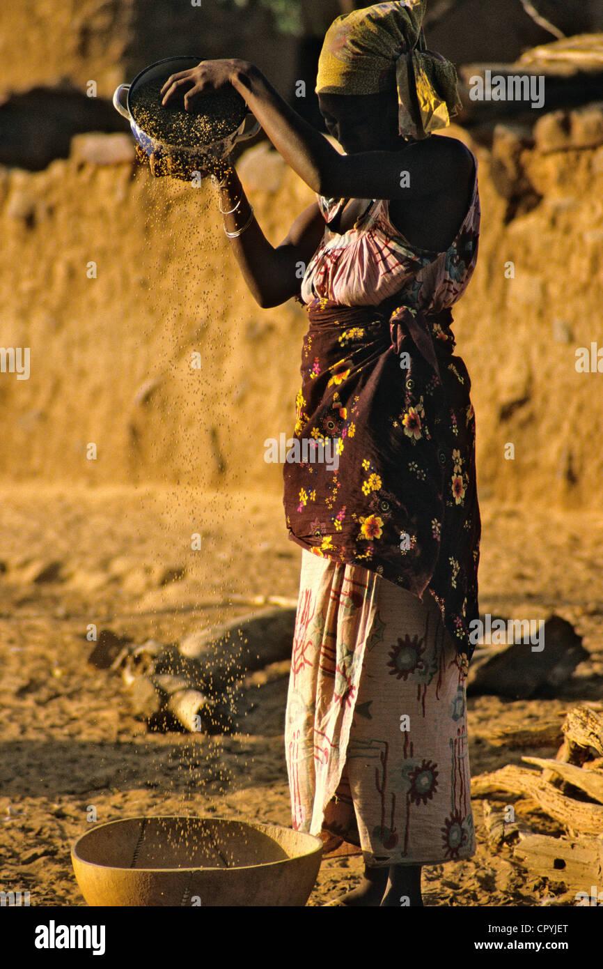 Mali, Pays Dogon, traditionnel à un effacement du millet au bas de falaises de Bandiagara, inscrite au Patrimoine Photo Stock