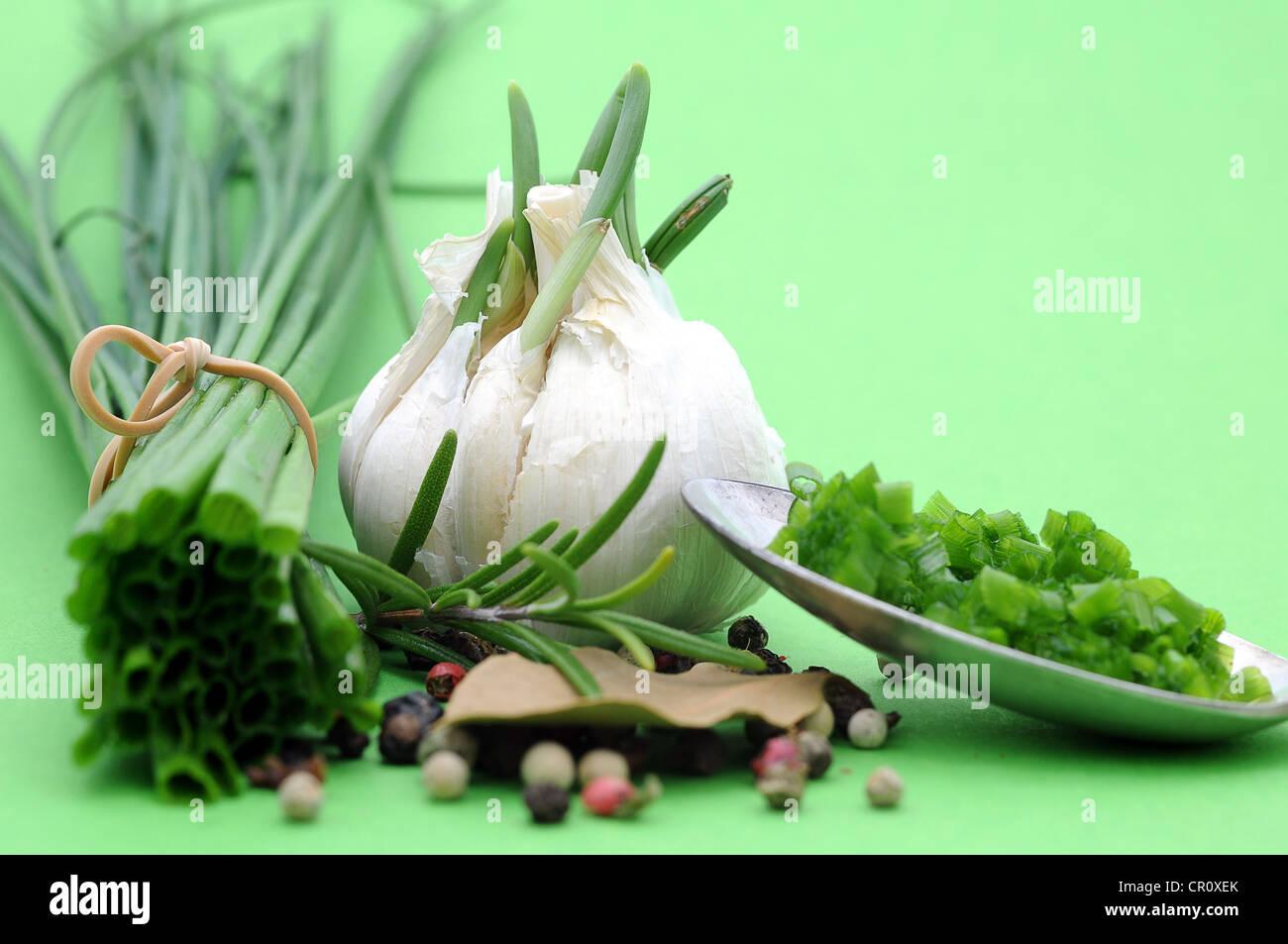 Les herbes et épices, la ciboulette, l'ail, le romarin, le poivre, la feuille de laurier Photo Stock