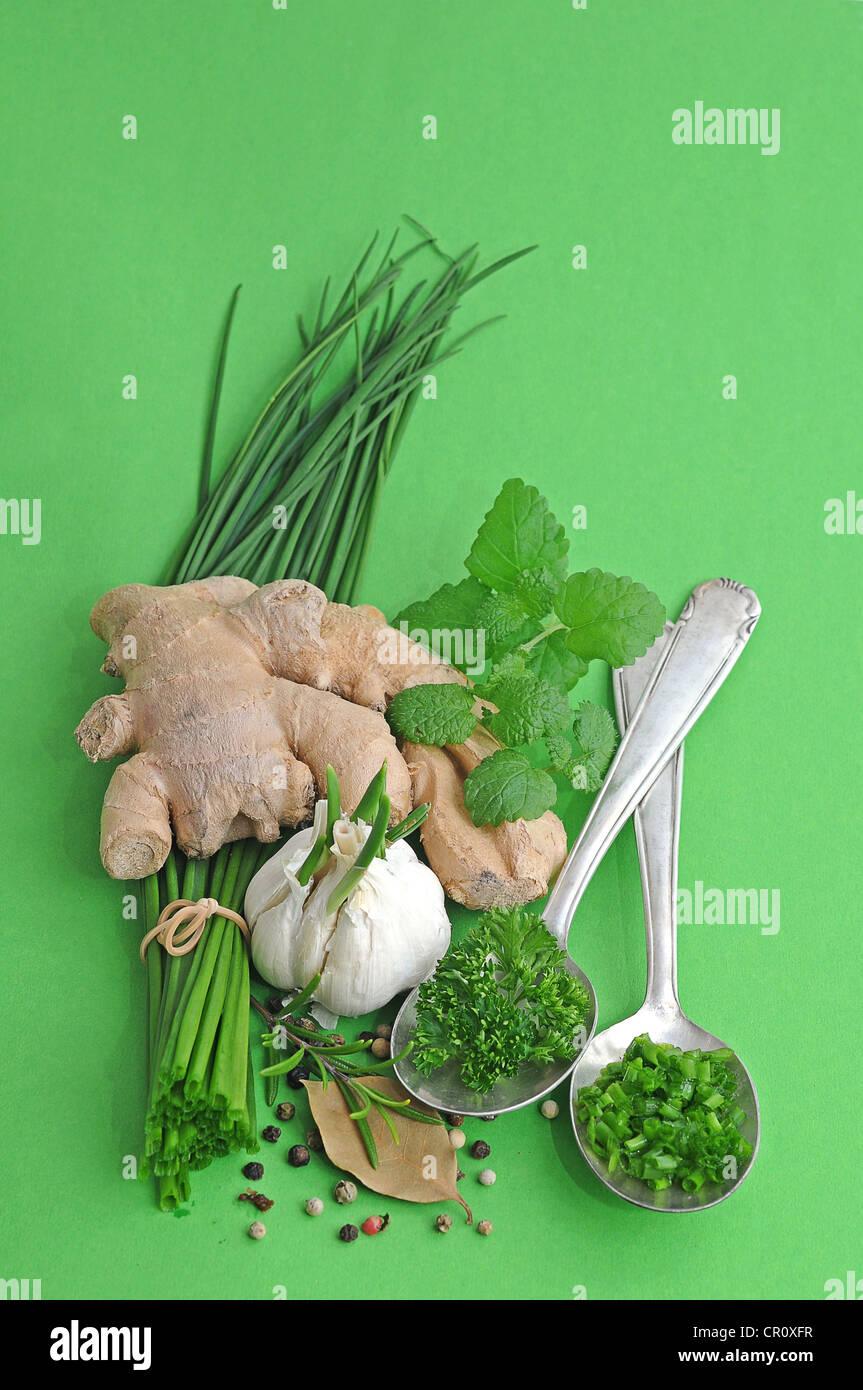 Les herbes et épices, le gingembre, la ciboulette, l'ail, romarin, persil, poivre, laurier, menthe Photo Stock