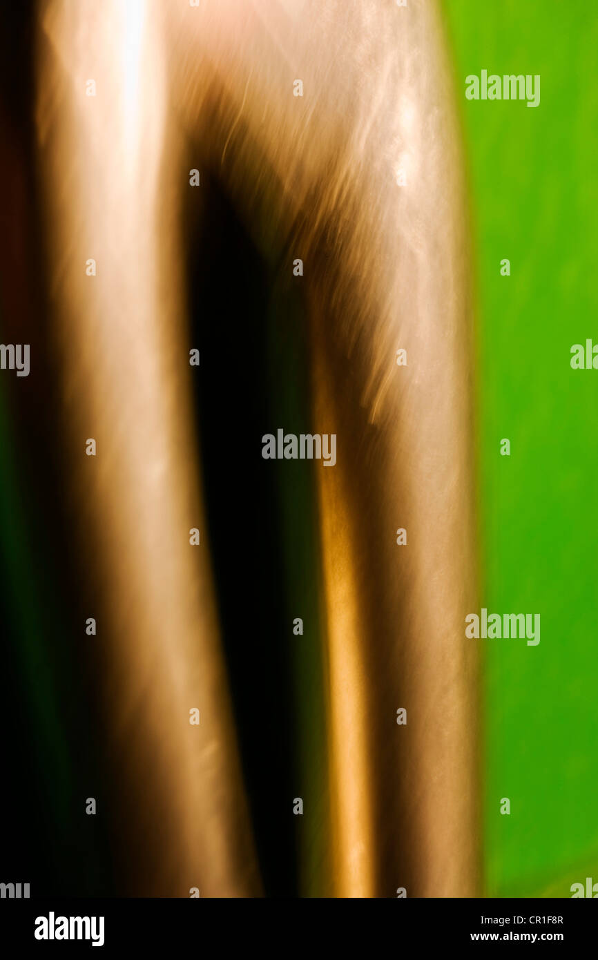 Gros plan extrême de ciseaux. Abstract image prise avec un objectif macro à fort grossissement. Photo Stock