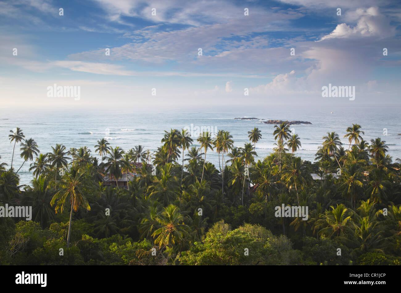 À l'aube, Unawatuna, Province du Sud, Sri Lanka Banque D'Images
