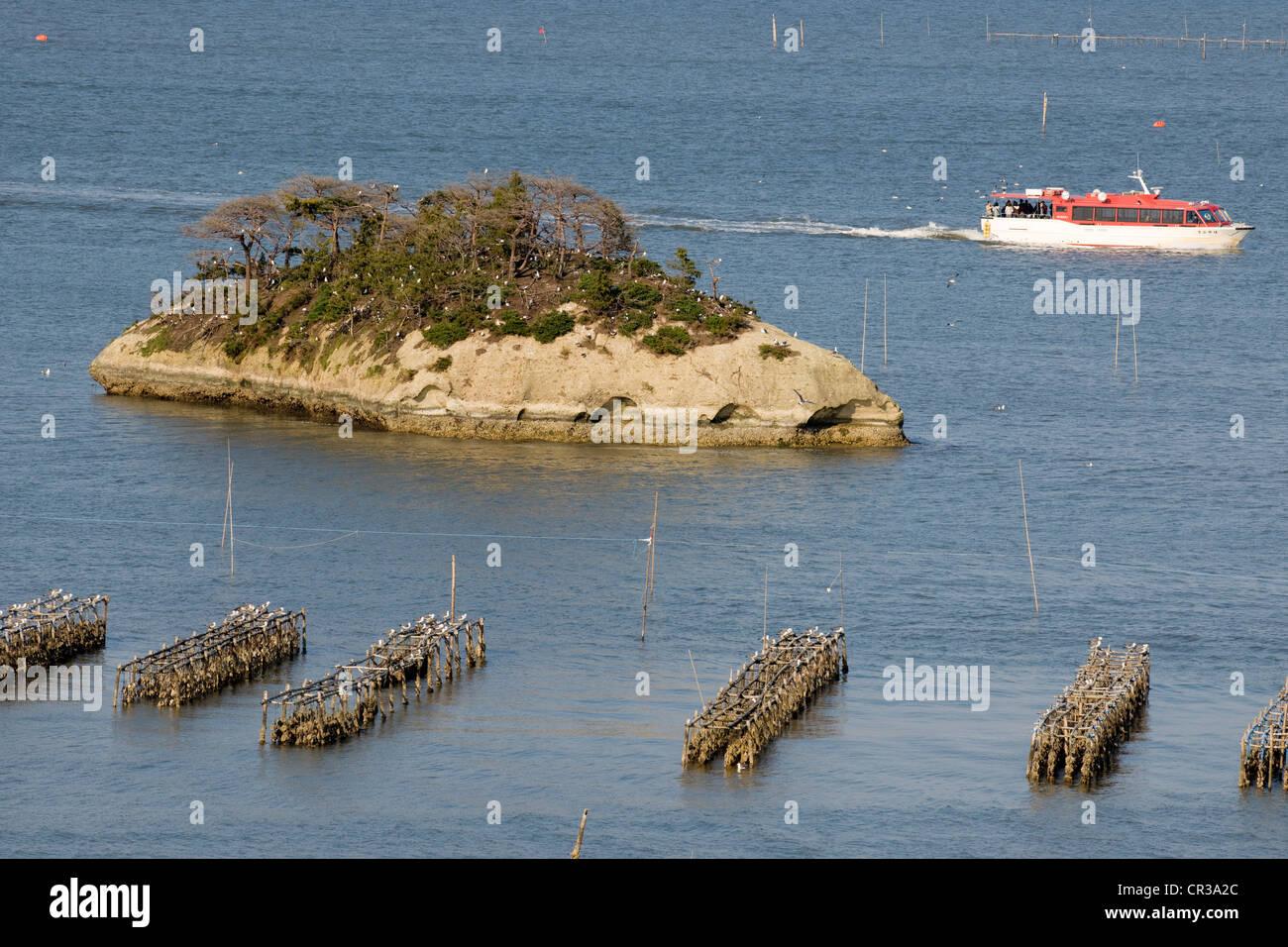 Le Japon, l'île de Honshu, région du Tohoku, Matsushima, la baie Photo Stock