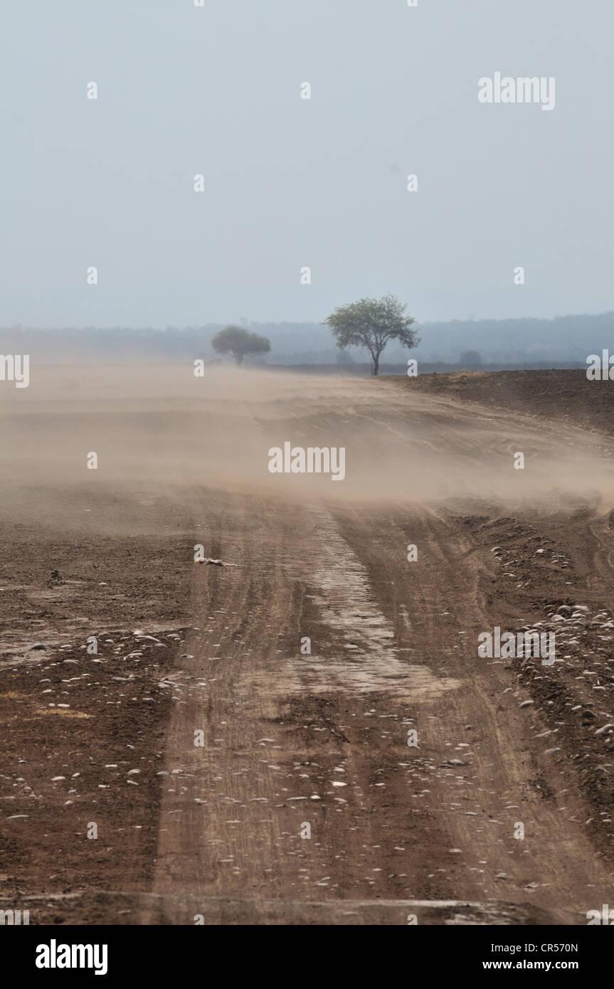 L'érosion, les sols riches en éléments nutritifs sont emportées par le vent à partir Photo Stock