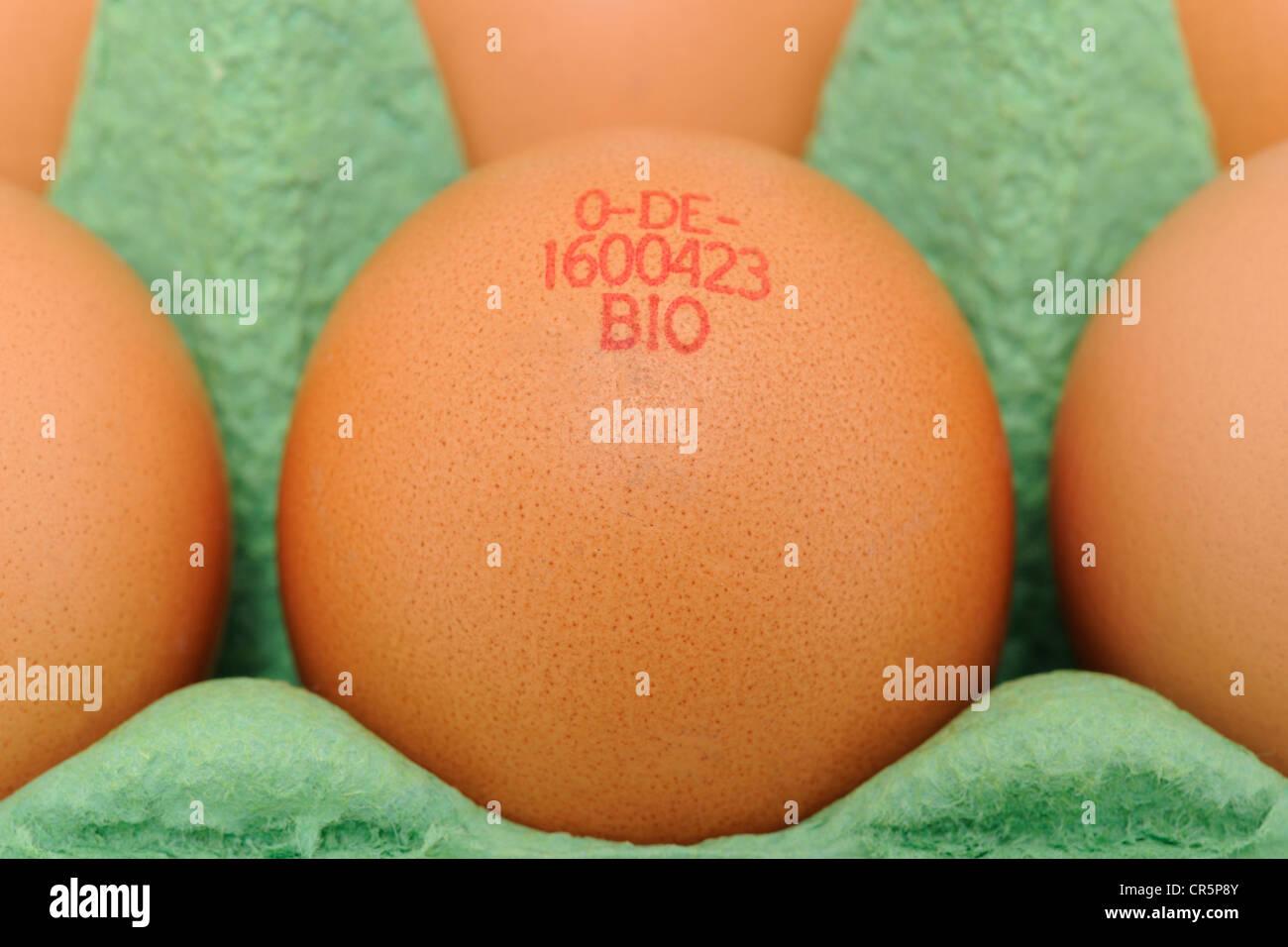Bio-oeufs estampillés dans l'emballage Photo Stock