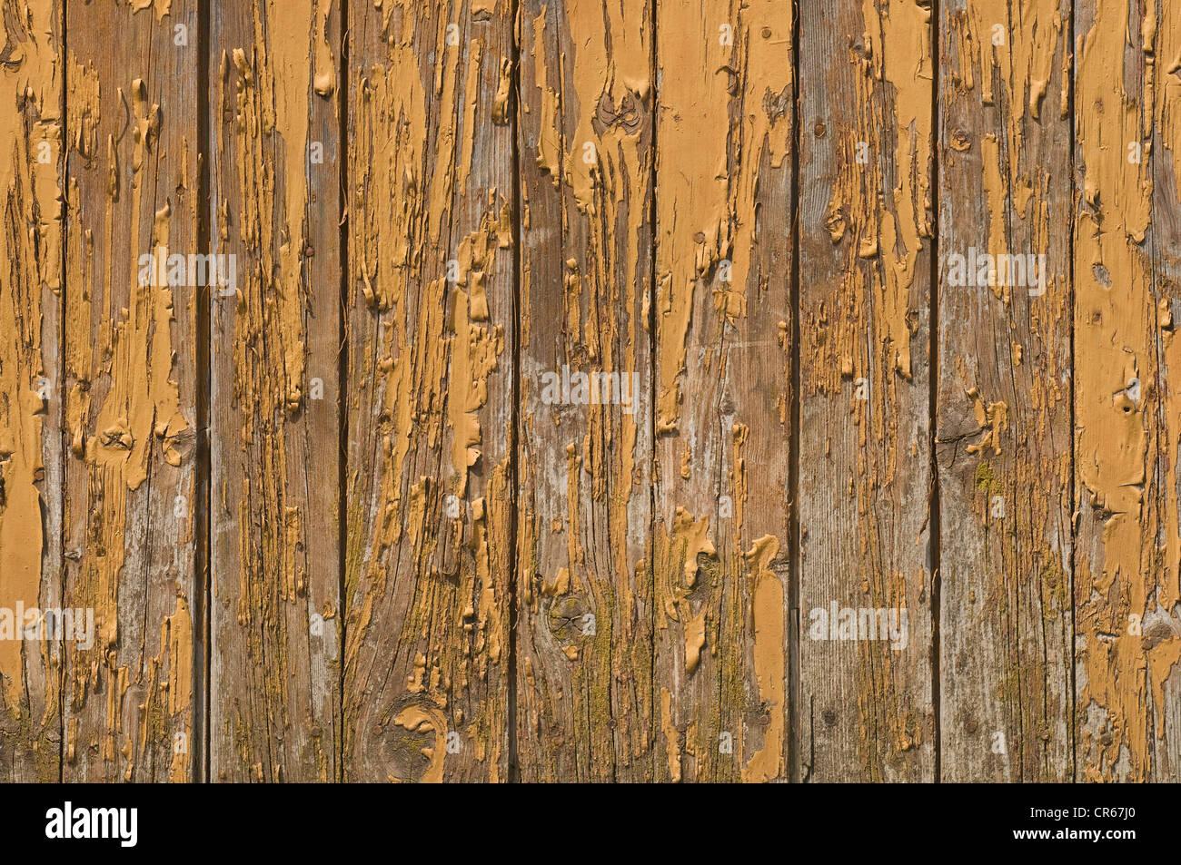 Vieux mur en bois avec peinture altérée Photo Stock