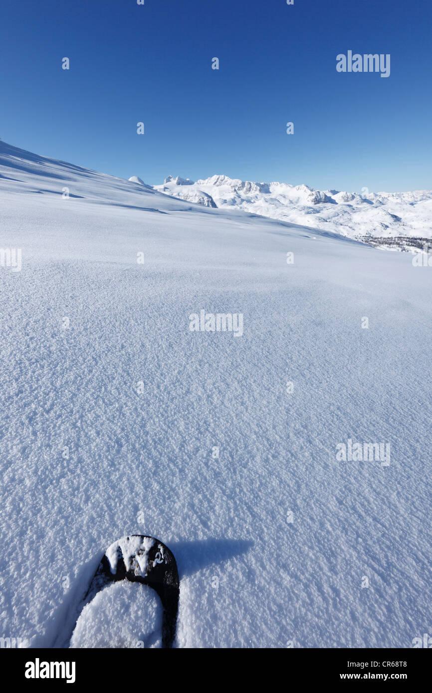 L'Autriche, Haute Autriche, raquette sur neige, montagnes en arrière-plan Photo Stock