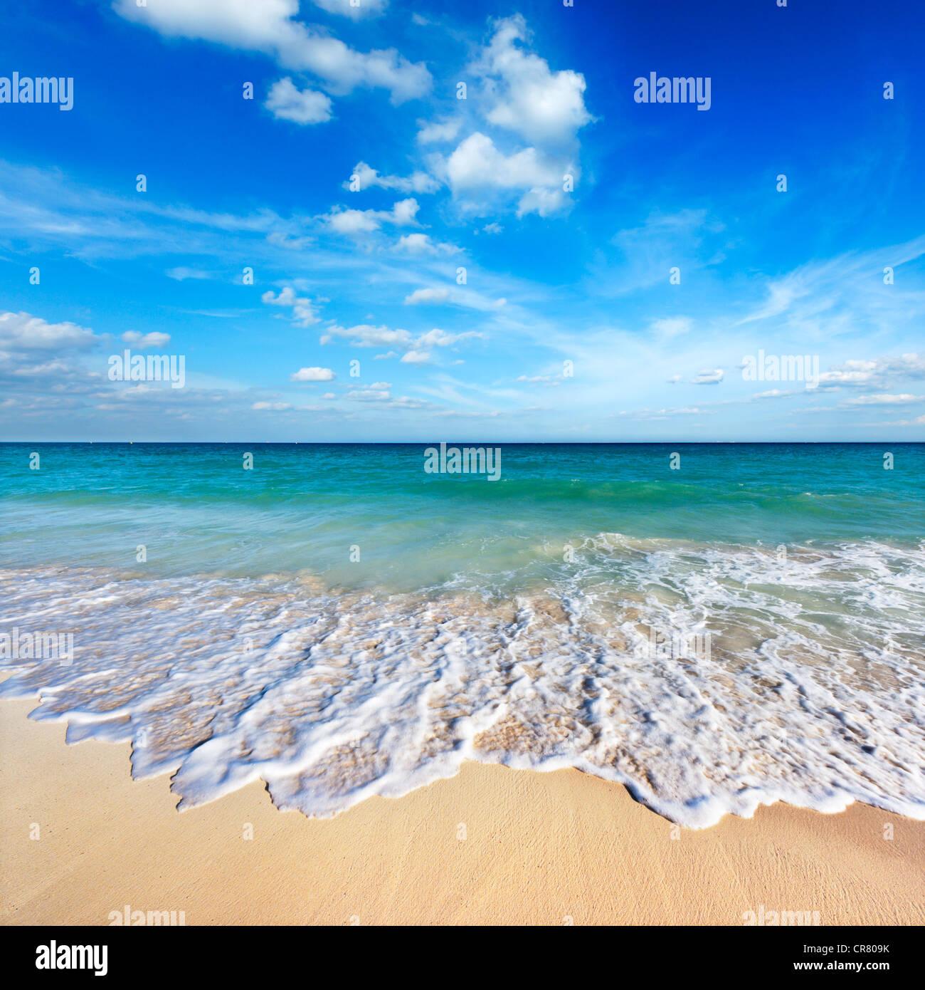 Belle plage et des vagues Photo Stock
