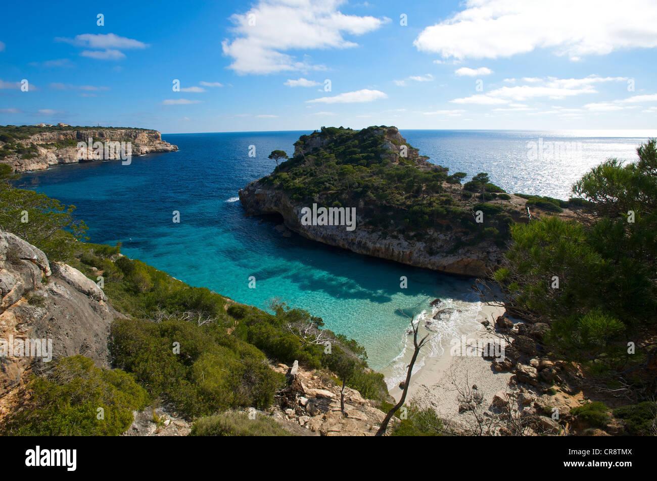 Cala S'Amonia, Majorque, Îles Baléares, Espagne, Europe Photo Stock