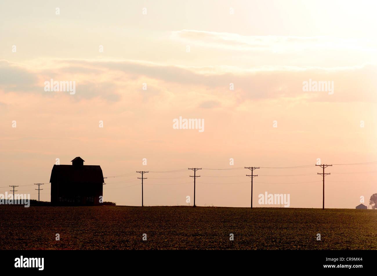 Une ancienne grange se trouve sur le bord d'un champ de soja dans l'Illinois aux États-Unis. Photo Stock