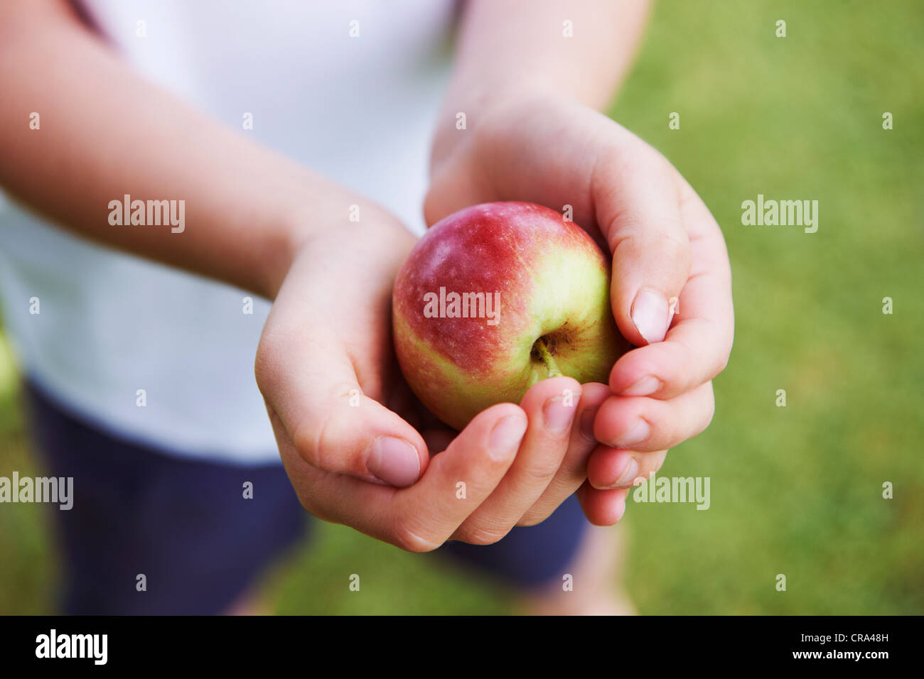 Close up of cupped hands holding fruit Photo Stock