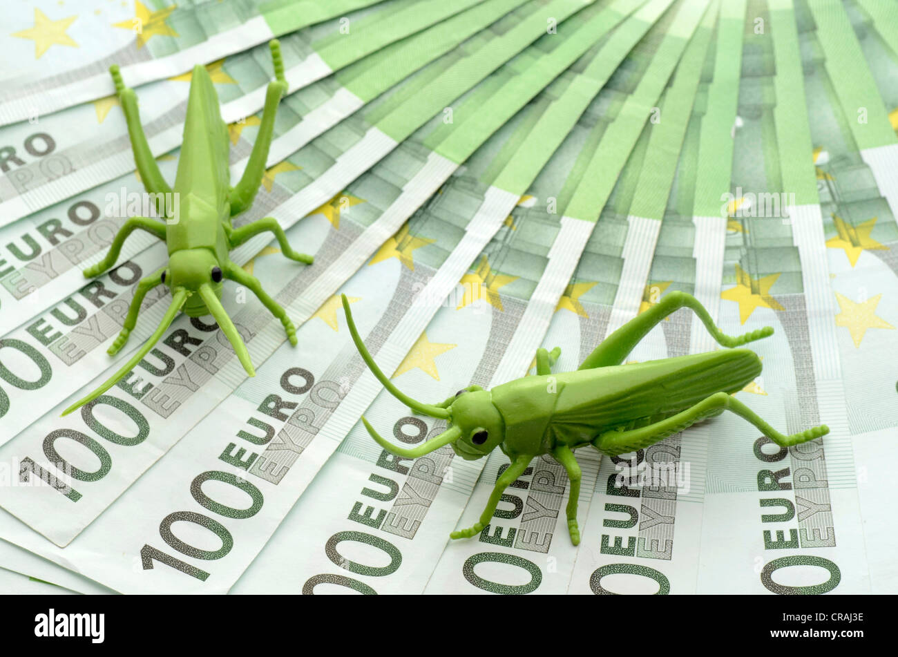 Les criquets sur les billets en euros, image symbolique de la crise de l'euro et les sociétés bénéficiant Photo Stock
