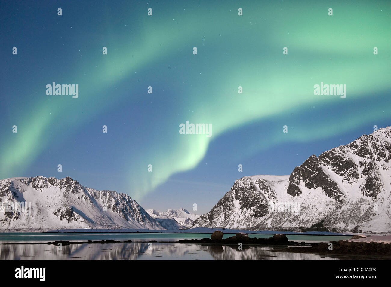 Northern Lights, aurora borealis, vu de Lyngvaerstranda sur l'île d'Austvågøya, surplombant le Fjord Gimsøystraumen Banque D'Images