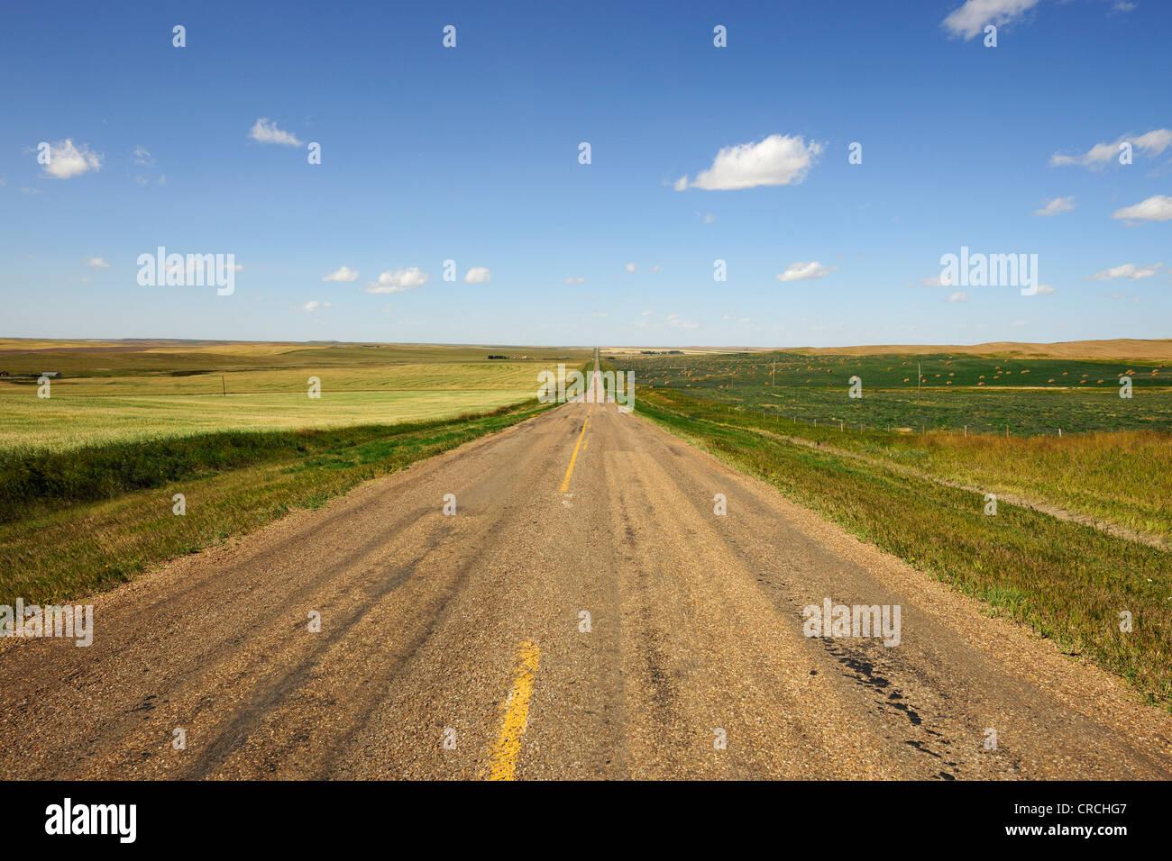 Route droite s'étend à l'horizon, des prairies, en Saskatchewan, Canada Photo Stock