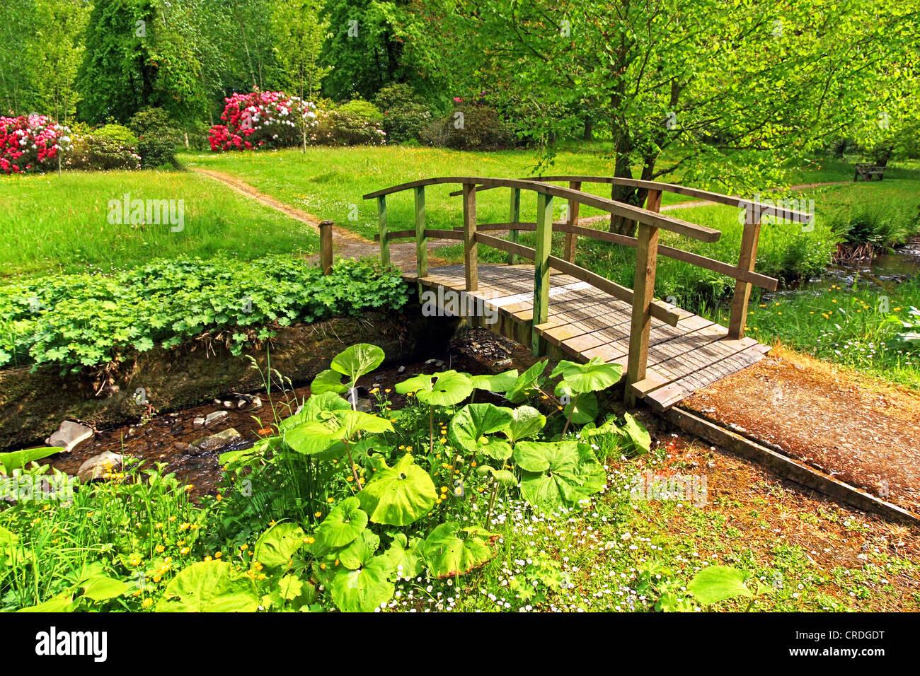 Vieux pont en bois dans un beau jardin, le printemps Photo Stock