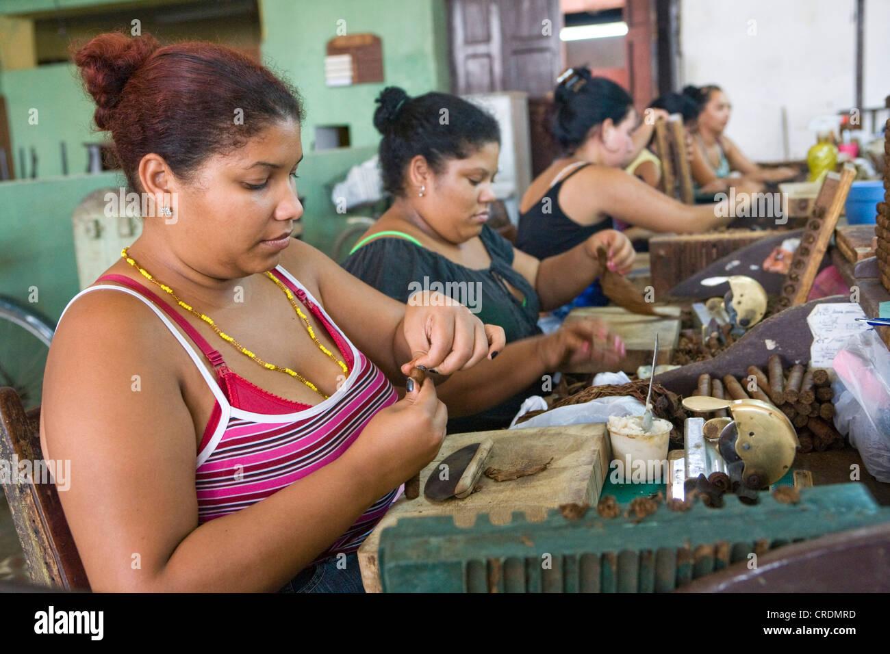 Les femmes qui travaillent dans une fabrique de cigares, plus de 100 femmes travaillant dans la Fabrica de Tabaco Photo Stock