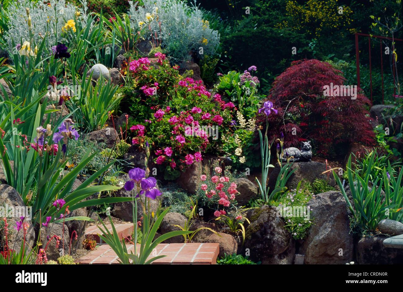 ROCK style méditerranéen avec terrasse jardin de vivaces ...