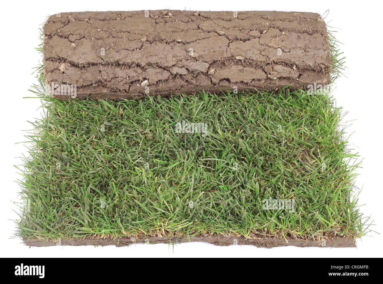 Rouleau de tapis d'herbe pour l'aménagement paysager isolé sur fond blanc Photo Stock