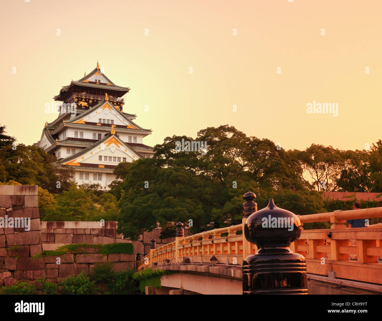 Le Château d'Osaka à Osaka, Japon. Photo Stock