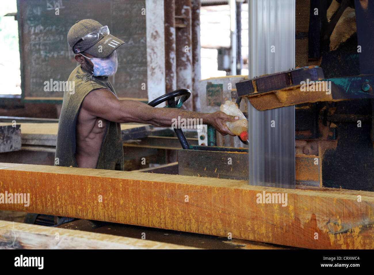 Travailleur dans l'entreprise de transformation du bois scierie, exploitation forestière, Santi, Province Photo Stock