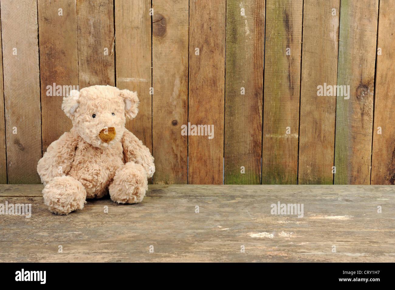 Ours assis contre un vieux mur en bois Photo Stock