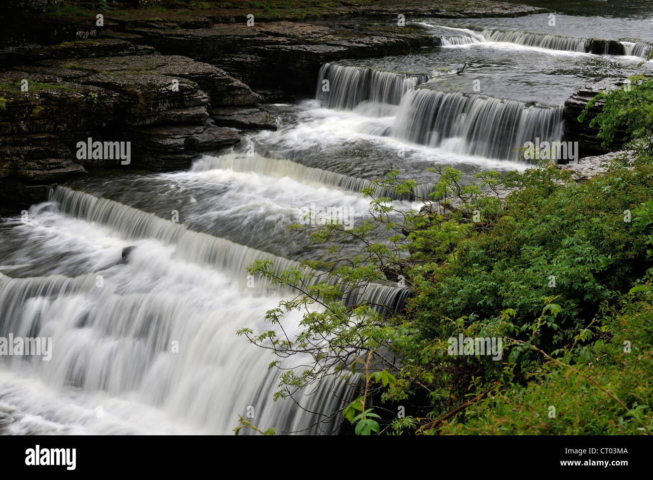 La spectaculaire Aysgarth Lower Falls, Wensleydale, Yorkshire, Angleterre Photo Stock