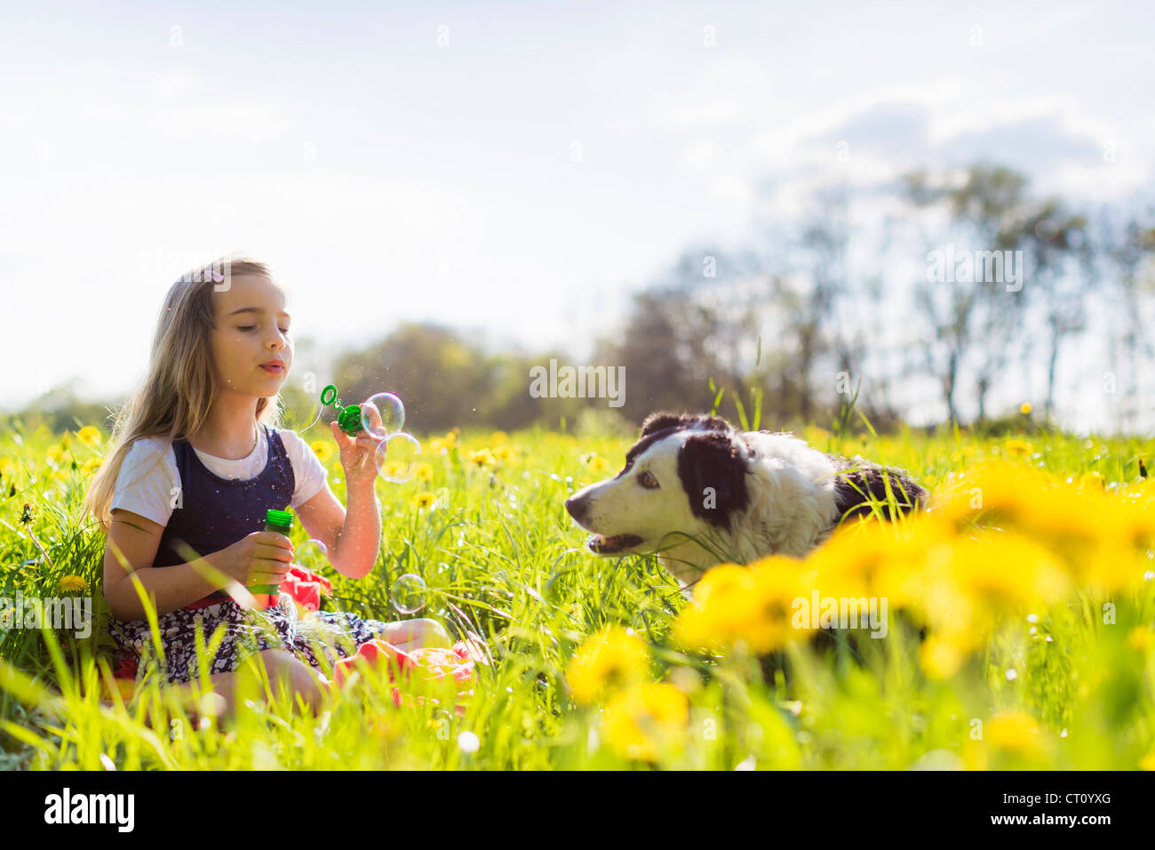 Girl blowing bubbles with dog in field Photo Stock