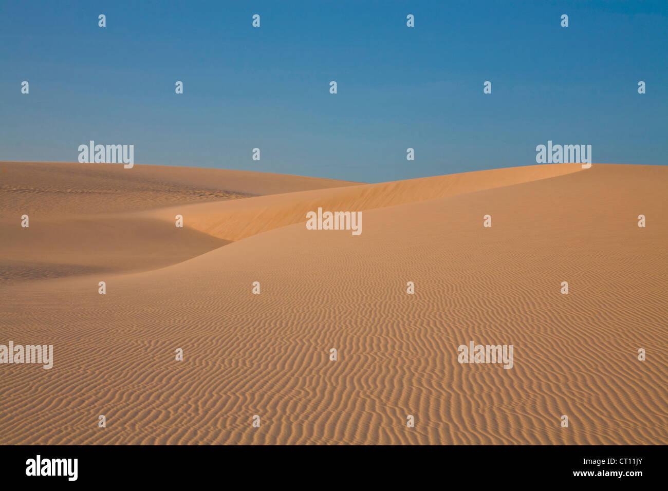 Ondulations dans les dunes de sable sous ciel bleu Photo Stock