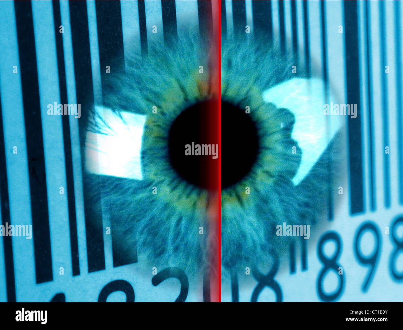 - Irisscan Biometrie Photo Stock