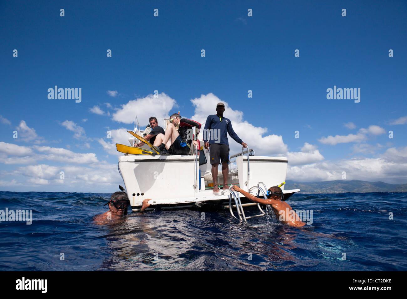 Voyage d'observation des baleines, la mer des Caraïbes, la Dominique Photo Stock