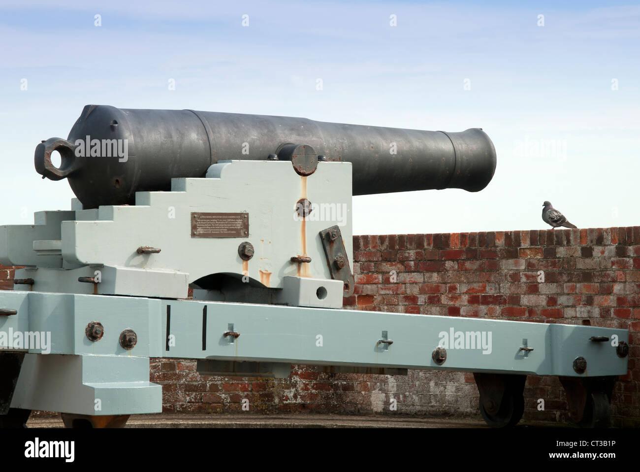 Cannon au château de Southsea avec pigeon Banque D'Images