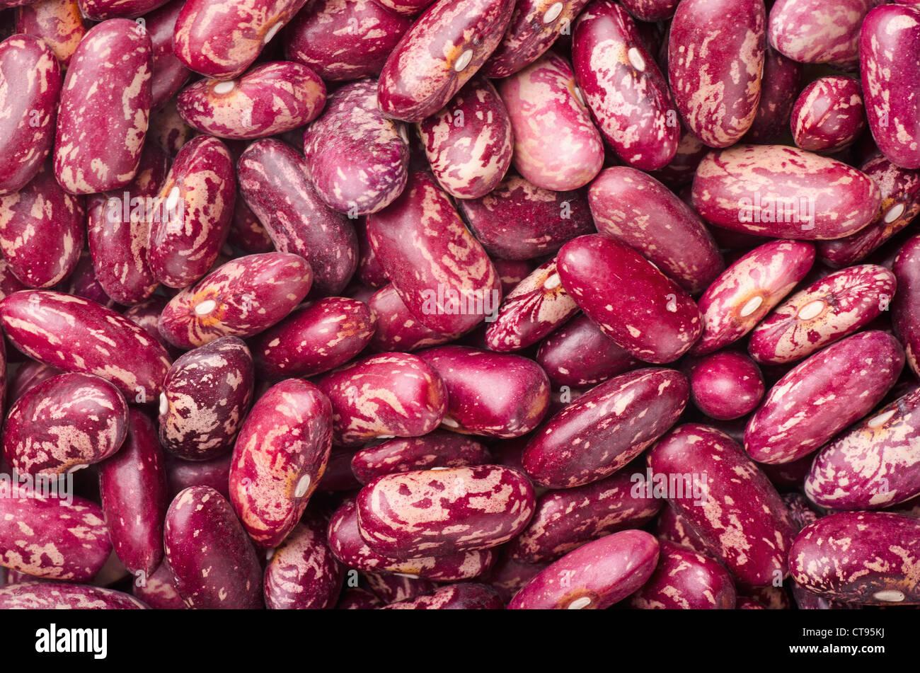 Rein secs haricots tachetés rouge Photo Stock