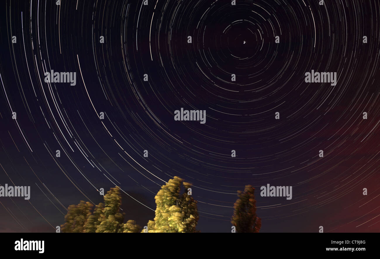 Nuit paysage, lonely tree dans le ciel de nuit avec des étoiles en mouvement Photo Stock