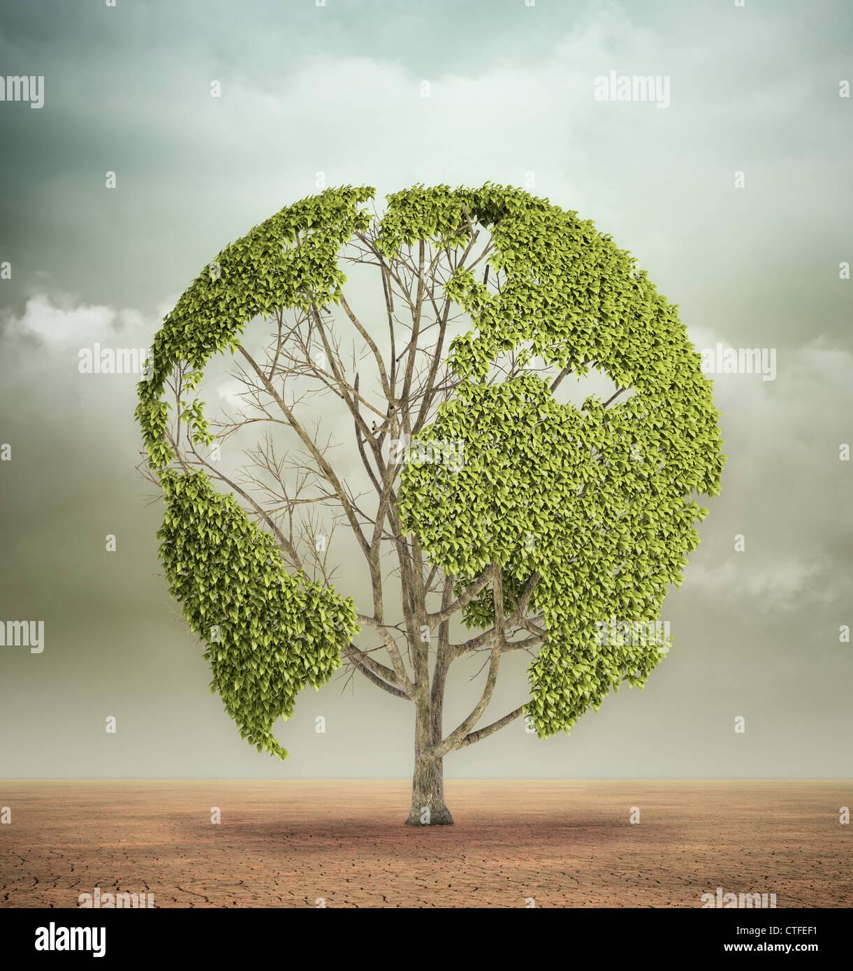 Un seul arbre avec la carte du monde dans un désert Photo Stock