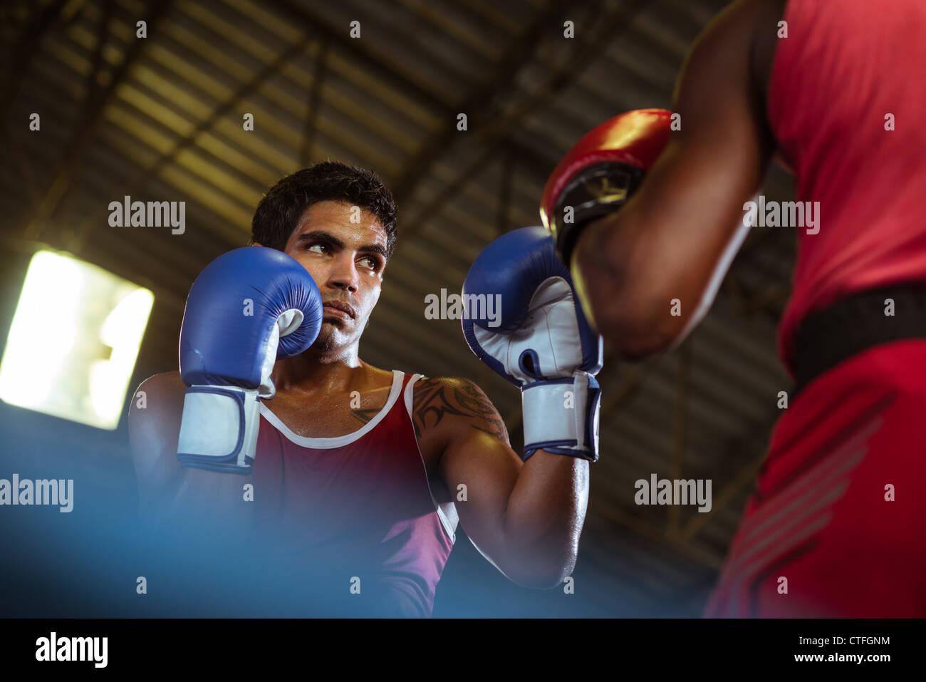 Sport et de personnes, deux hommes l'exercice et les combats en boxe de fitness Photo Stock