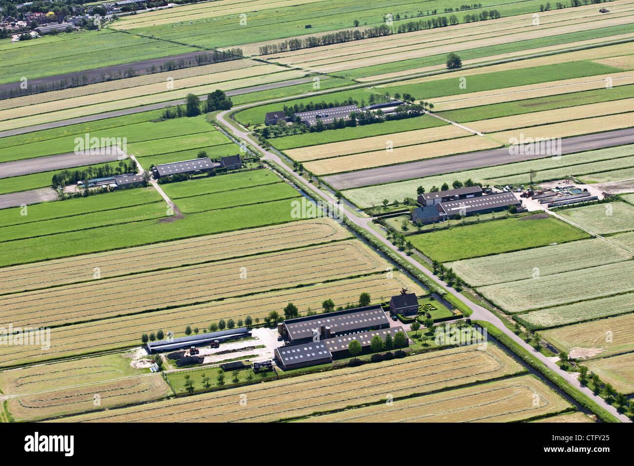 Les Pays-Bas, Loosdrecht, de fermes. Vue aérienne. Photo Stock