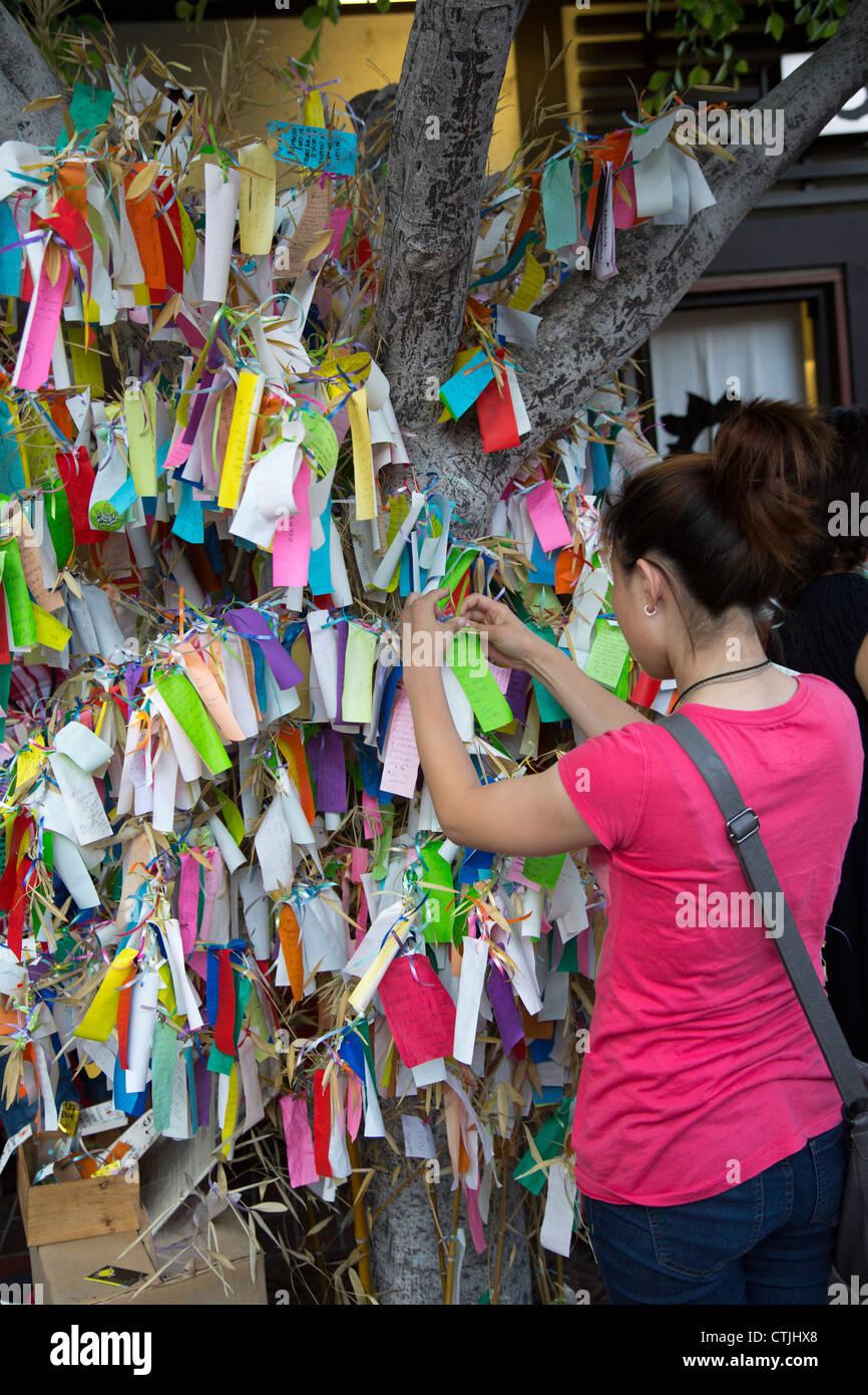 Une femme ajoute son souhait d'un wishing tree dans le quartier de Little Tokyo Los Angeles Banque D'Images