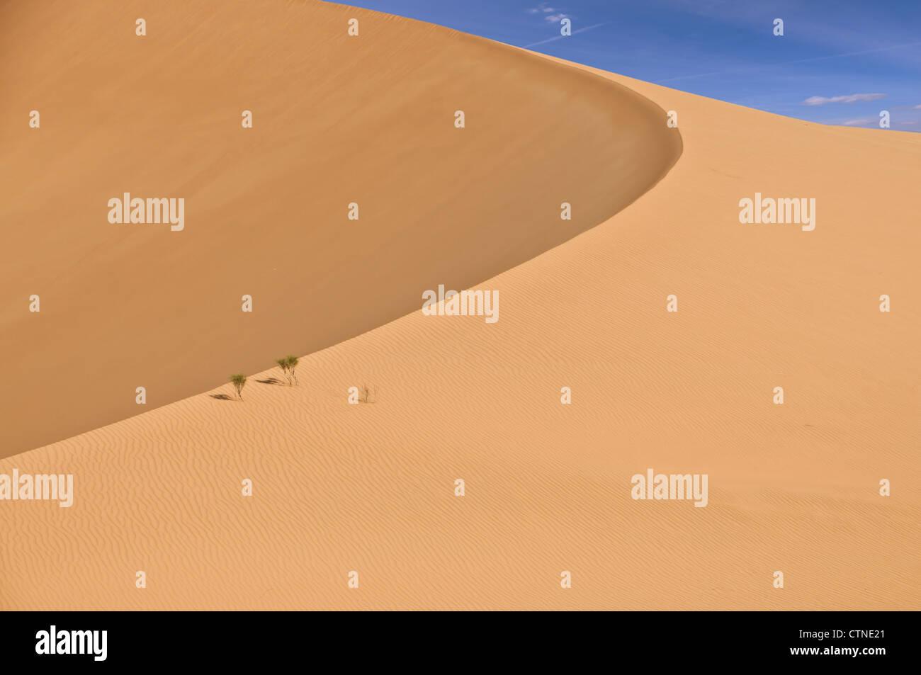 Dunes dans le désert du Rub Al Khali dans l'ouest de l'Oman Photo Stock