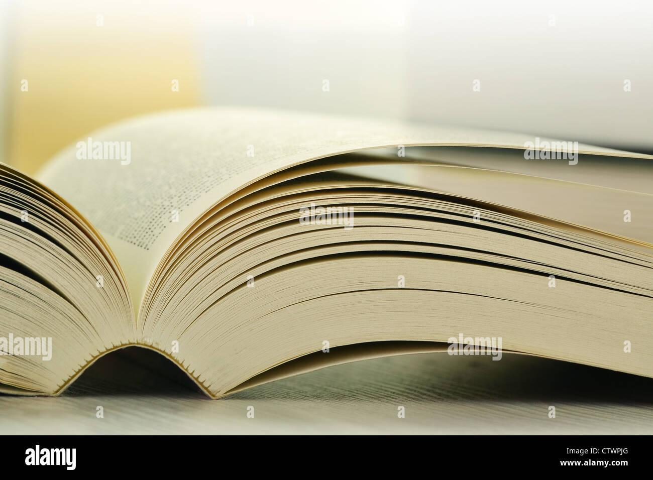 La composition avec des livres sur la table Photo Stock