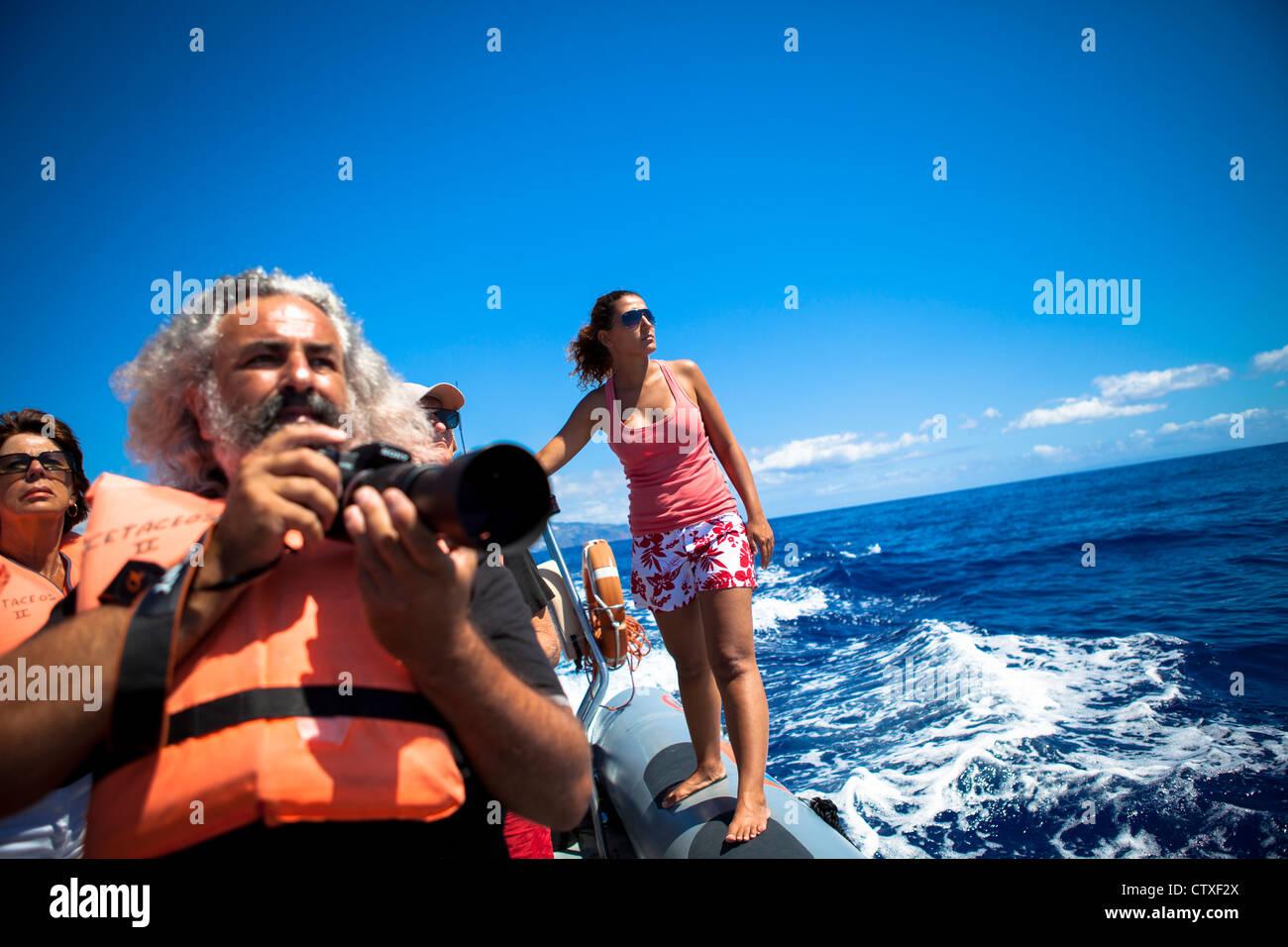 L'observation des baleines de Madère, Portugal Photo Stock