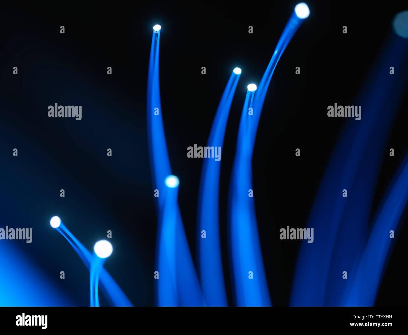 Close up de câbles à fibres optiques Photo Stock