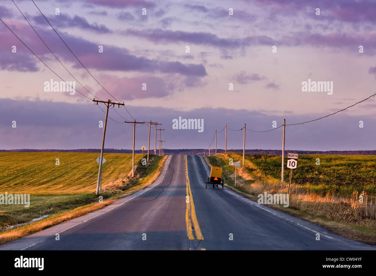 Buggy Amish voyager une route dans les pays, la fin de l'automne, la vallée de la Mohawk, centre de l'État Photo Stock