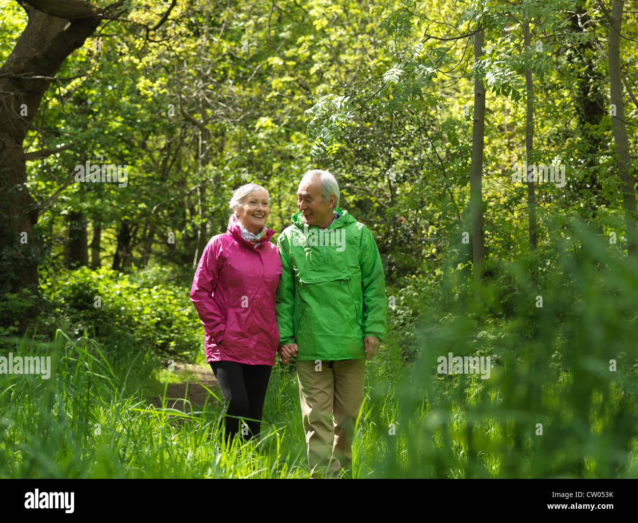 Vieux couple walking in forest ensemble Photo Stock