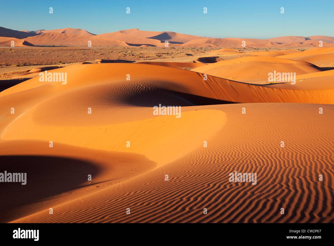Modèle dune complexes éclairés par le soleil du matin. Sossusvlei dans le désert du Namib. Namib-Naukluft N.P, Namibie Banque D'Images