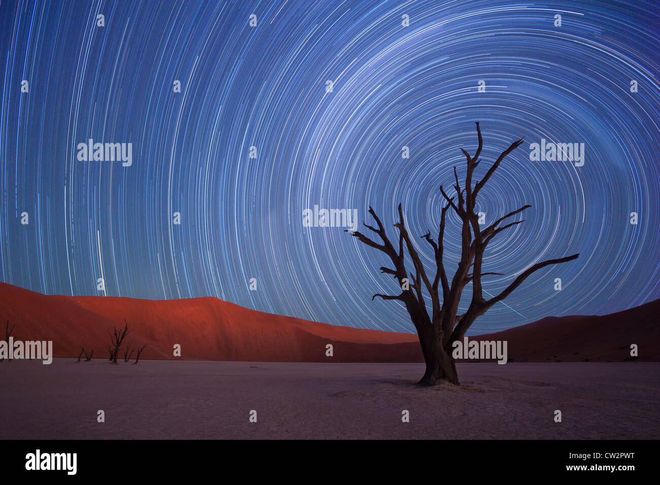 Star Trails,Dead Vlei, Sossusvlei, Namibie Photo Stock