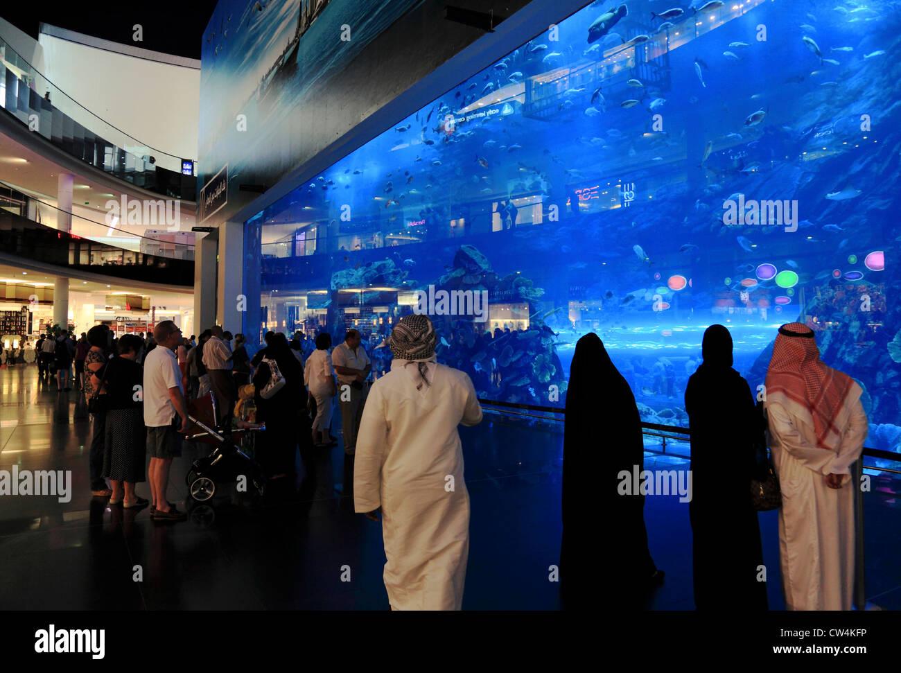 3580. Aquarium, Centre Commercial de Dubaï, DUBAÏ, ÉMIRATS ARABES UNIS. Photo Stock