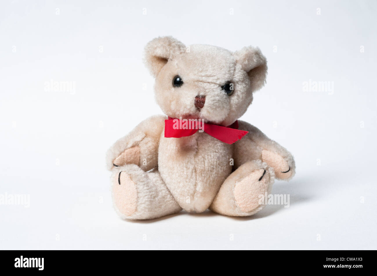 Petit Ours Photo Stock