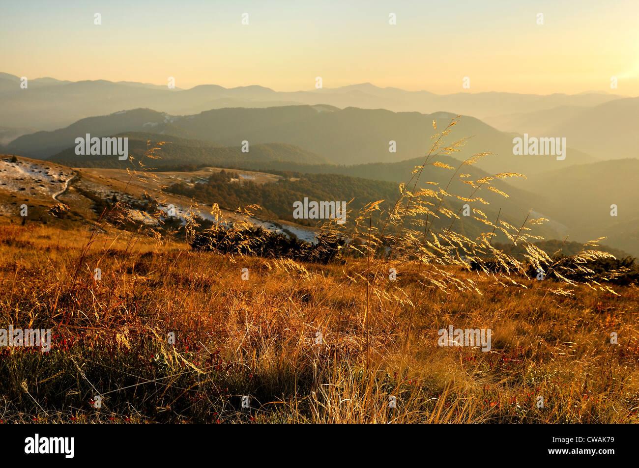 Sheshul, dans la zone des Carpates, région d'Ivano-Frankivsk, Ukraine Photo Stock