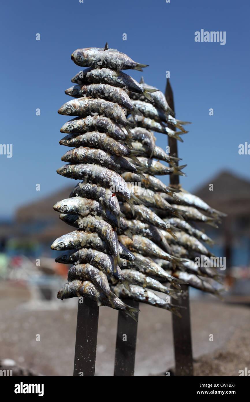 Sardines préparé pour le gril. Fuengirola, Costa del Sol, Andalousie Espagne Photo Stock