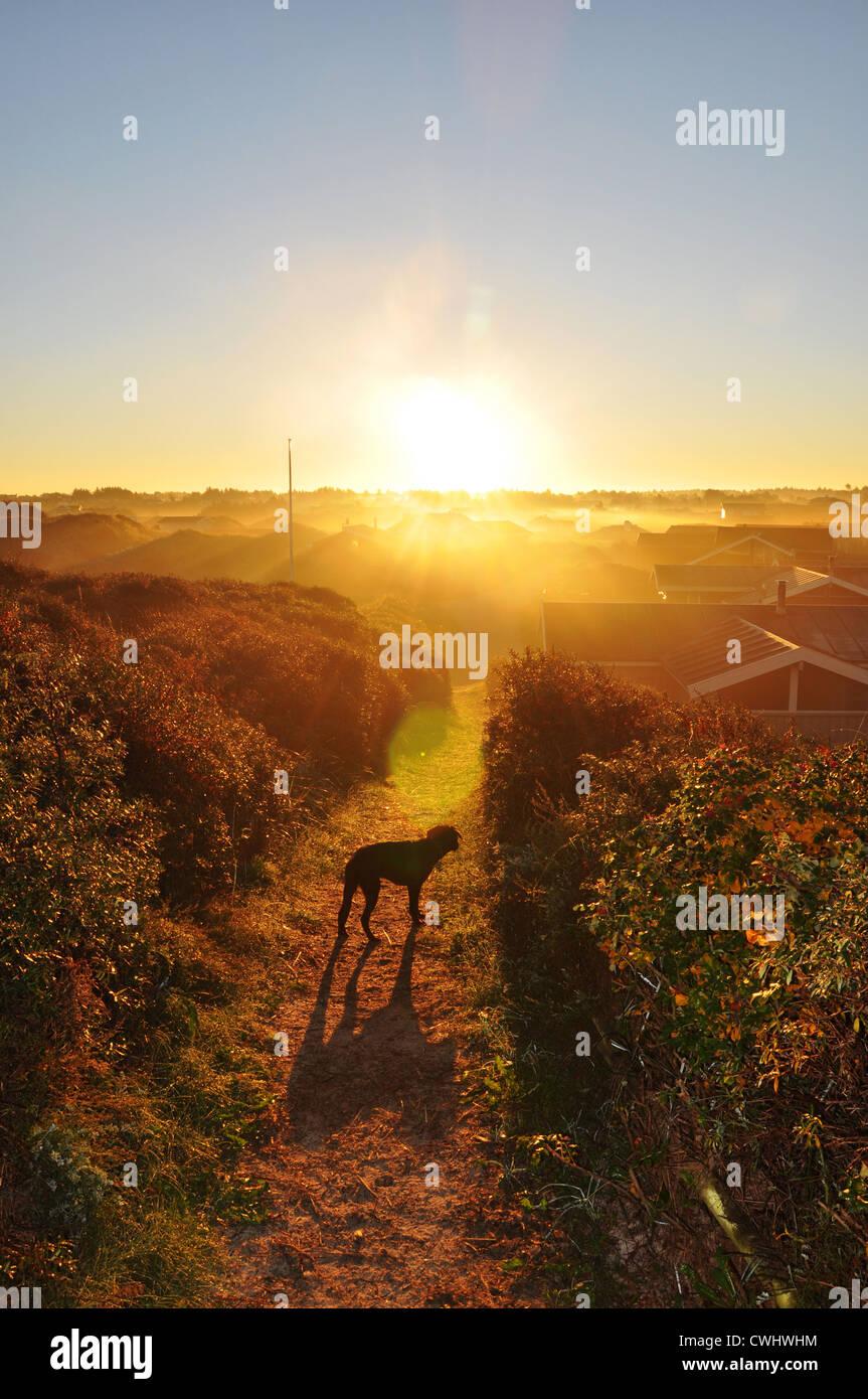 Lever du soleil,l'humeur du matin Banque D'Images