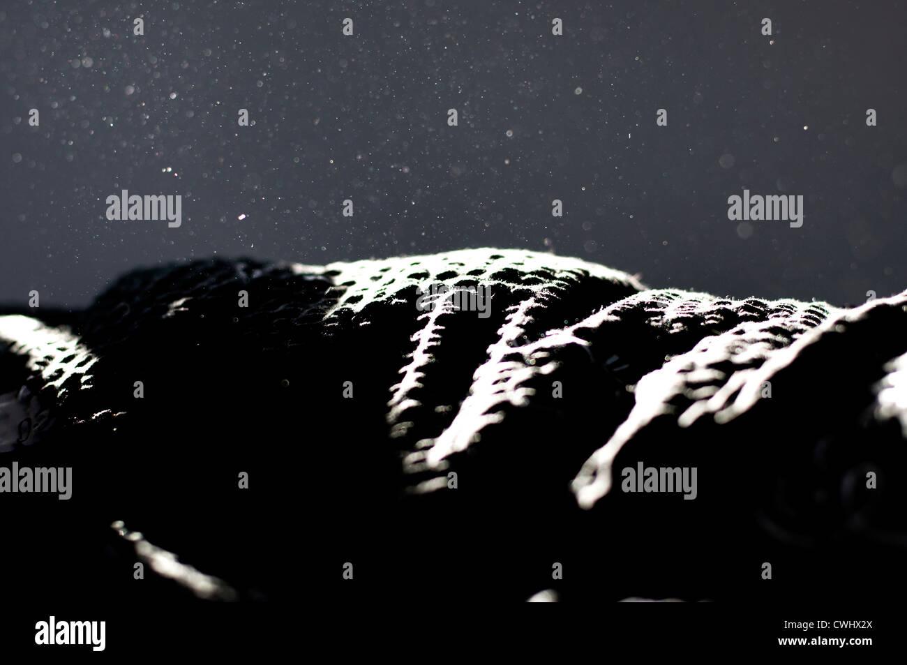 La poussière de maison,couverture Banque D'Images